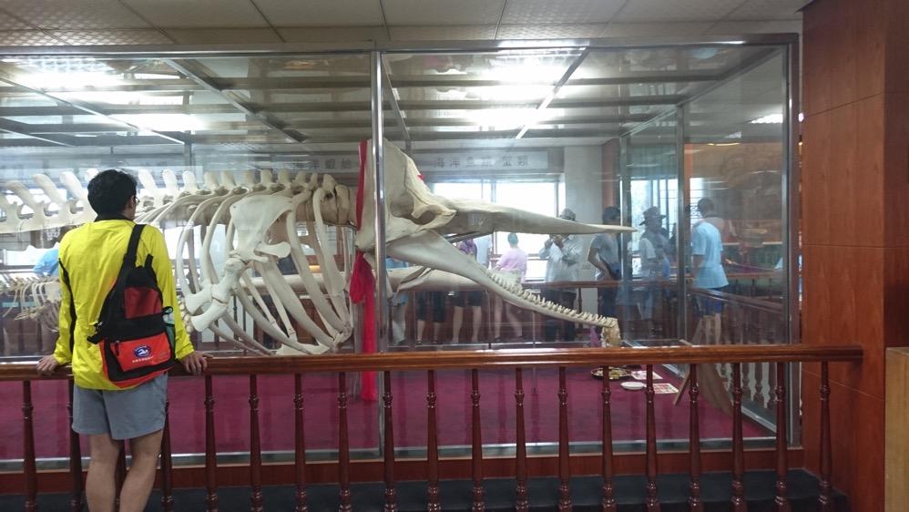台灣有趣的博物館之旅! 台湾おもしろ博物館