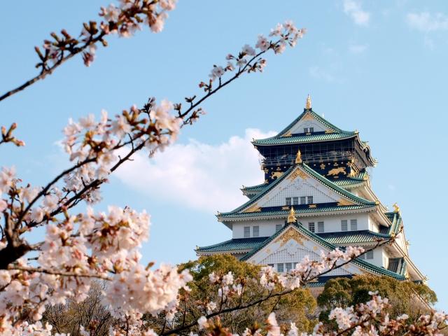 京都・大阪地方打工度假說明會!